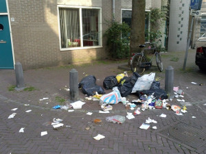 Leiden Rubbish - Small