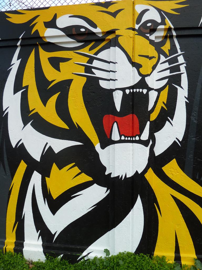 brisbane lions game 075